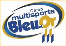 Camp multisports Bleu et Or